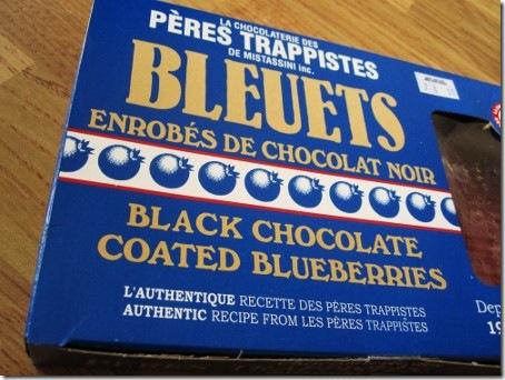 bleuets (450x338)